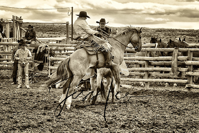 Cowboy photo, photography,pictures Cowboys and cowgirls living the western lifestyle.