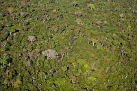 A região Leste do Mato Grosso está localizada no Planalto Centro-Brasileiro. Sob forte influência hidrográfica do interflúvio Xingu/Tocantins-Araguaia, a área é drenada por rios das sub-bacias do Araguaia, como o Rio das Mortes; da sub-bacia do Xingu, como o Culuene; e da sub-bacia do Tapajós, como o Teles Pires. O bioma predominante é o Cerrado, contudo, existem porções significativas da Amazônia e do Pantanal.<br /> A região localiza-se no nordeste do estado do Mato Grosso, na porção sul da Amazônia brasileira e é formada pelo Parque Indígena do Xingu, criado em 1961, e pelas áreas contíguas, demarcadas posteriormente, as TIs Wawi, Batovi e Pequizal do Naruvôtu. Está situada na região de transição dos biomas Cerrado e Amazônia e é um símbolo da sociodiversidade e da biodiversidade.<br /> <br /> O Parque Indígena do Xingu foi a primeira grande terra indígena reconhecida no país e também a primeira a abrigar várias etnias – hoje são 16 povos. A porção sul é habitada por 10 etnias, que apesar de falarem línguas diferentes, compõem um sistema cultural conhecido como Alto Xingu, principalmente por estarem há seculos articulados em uma complexa rede de trocas, casamentos e rituais. Os demais povos estão distribuídos em três sub-regiões, médio, baixo e leste Xingu, e não fazem parte desse complexo cultural, sendo bastante heterogêneos do ponto de vista sociocultural.<br /> <br /> Fonte ISA<br /> Parque Indígena do Xingu, Querência, Mato Grosso, Brasil.<br /> Foto Paulo Santos<br /> 27/07/2015
