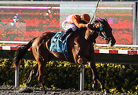 Second place finisher Beholder in the Del Mar Debutante at Del Mar Race Course in Del Mar, California on September 1, 2012.