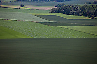 Campi dove si svolse il 18 giugno 1815 la battaglia di Waterlo