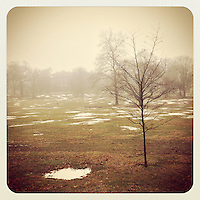 Fog fills the field at the New Covenant campus in Mt. Airy on February 11, 2013.