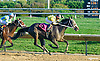 Lake Ouachita winning at Delaware Park on 10/14/15