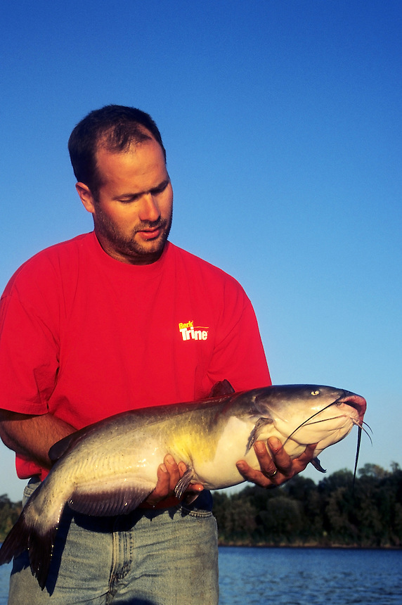 Angler with trophy channel catfish caught in Red River, Manitoba, Canada