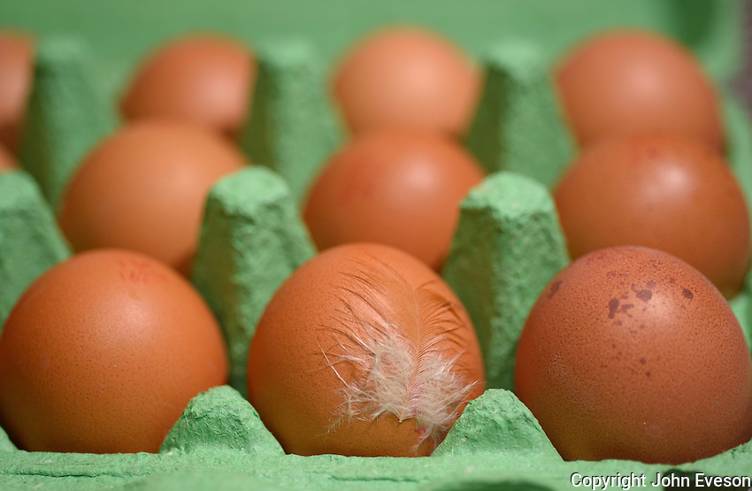 Close-up of free range hens eggs in a green carton and date stamps, Chipping, Lancashire.