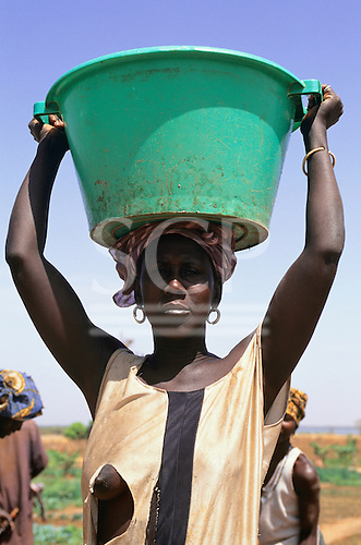 Gambia. Woman in torn, ragged dress carrying a large green plastic container of water on her head for irrigation.