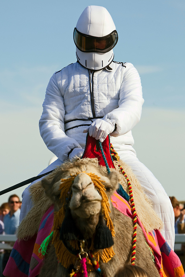Fakenham, Norfolk, England, 10/04/2011..A jockey dressed as Stig, from the BBC's Top Gear, at the start of racing at Fakenham National Hunt racecourse. Jockeys wearing fancy dress and representing six local pubs took part in three camel races to race funds for the East Anglian Air Ambulance. The winner was Kerry Sumner from the Crown at Gayton, riding a five year old Pintado dromedary called Sahara.