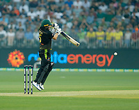 8th November 2019; Optus Stadium, Perth, Western Australia Australia; T20 Cricket, Australia versus Pakistan; Aaron Finch of Australia gets on his toes to play at a shorter delivery - Editorial Use