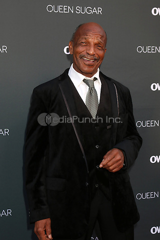 BURBANK, CA - AUGUST 29: Henry Sanders<br />at the Premiere Of OWN's &quot;Queen Sugar,&quot; Warner Brothers Studios, Burbank, CA 08-29-16Credit:  David Edwards/MediaPunch