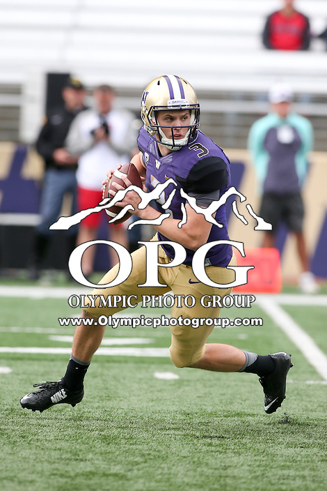 03 September 2016:  Washington quarterback #3 Jake Browning scrambles while loking down field for an opening receiver against Rutgers.  Washington defeated Rutgers 48-13 at the University of Washington in Seattle, WA.
