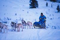 D Jonrowe Uphill Near Rainy Pass 2000 Iditarod AK
