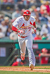 2 March 2013: St. Louis Cardinals outfielder Oscar Taveras hustles to first during a Spring Training game against the Washington Nationals at Roger Dean Stadium in Jupiter, Florida. The Nationals defeated the Cardinals 6-2 in their first meeting since the NLDS series in October of 2012. Mandatory Credit: Ed Wolfstein Photo *** RAW (NEF) Image File Available ***