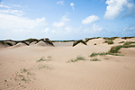 Dunes between the Lodbjerg Lighthouse and Lyngby in Thy National Park, Denmark