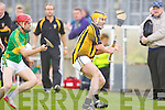 Abbeydorney's Damian Ryalll and Lixnaw's Conor O'Brien in action in the hurling county championship at Austin Stack park, Tralee on Saturday.