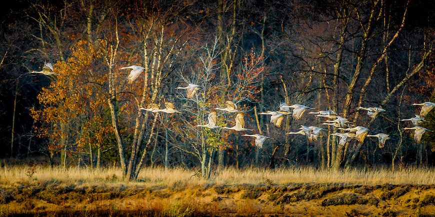 Selected for the front cover of &quot;Midwest Prairie Review&quot; magazine in April, 2014.<br />