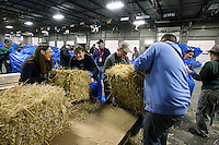 Volunteers bag, palletize and add postage to 1500 bales of straw at Airland Transport in Anchorage to be sent out to the 22 checkpoints along the Iditarod trail Thursday, Feb. 7, 2013.