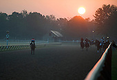 The Best of Saratoga Sunrises