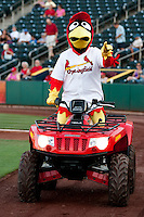 "Springfield Cardinals Mascot ""Louie"" rides an ATV during a game against the Tulsa Drillers at Hammons Field on July 20, 2011 in Springfield, Missouri. Springfield defeated Tulsa 12-1. (David Welker / Four Seam Images)"