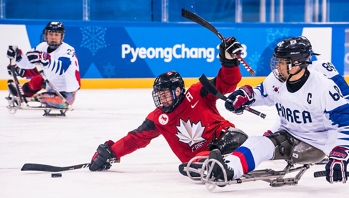 PyeongChang 15/3/2018 - Tyler McGregor (#8), of Forest, ON, with the goal as Canada takes on Korea in semifinal hockey action at the Gangneung Hockey Centre during the 2018 Winter Paralympic Games in Pyeongchang, Korea. Photo: Dave Holland/Canadian Paralympic Committee