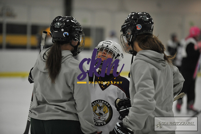 Stevenson's Women's Ice Hockey team volunteered their time to assist with the Baltimore Saints Ice Hockey, a league devoted to the inclusion of those with traumatic brain injuries or developmental disabilities. Stevenson's Women's Ice Hockey team volunteered their time to assist with the Baltimore Saints Ice Hockey, a league devoted to the inclusion of those with traumatic brain injuries or developmental disabilities.