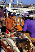 Belem, Amazon, Brazil; unloading river fish at the dock for the fish market.