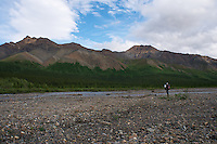 June 27, 2011, Geologist and photographer Ron Karpilo searching along the banks of the Teklanika River for a 1919 camp of U.S. Geological Survey geologist Stephen R. Capps, Denali National Park and Preserve, Alaska, United States.