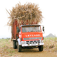 Truck loaded and transporting sugarcane in Mauritius
