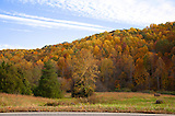 Brushy Mountain With Beautiful Fall Color beneath a scattered Cloudy Sky