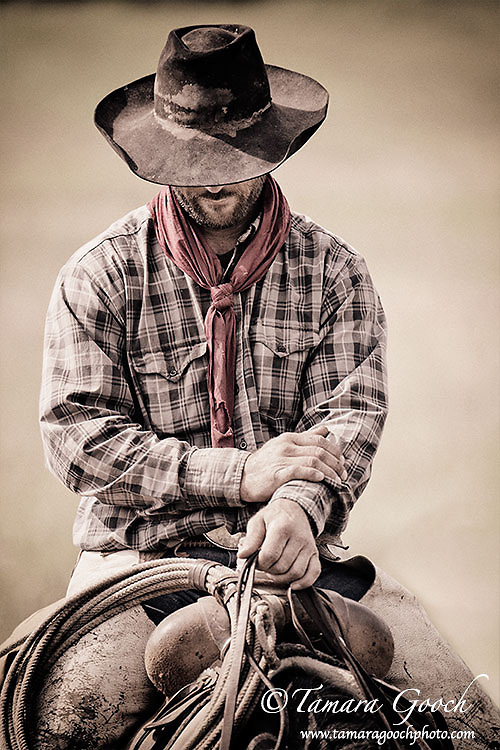 A photo of a cowboy resting in the saddle. Cowboy Photos, riding,roping,horseback