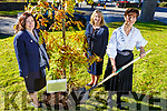 Cathaoirleach of Kerry County Council, Cllr Norma Foley planting a tree in the grounds of the Kerry County Council Buildings at Rathass, Tralee to mark the centenary of the beginning of the extension of parliamentary suffrage to Irish women in 1918 on Monday. L-r, Maura Murrell (CEO Kerry Co Council), Angela McAllen (Head of Finance) and Cllr Norma Foley (Cathaoirleach of Kerry County Council).