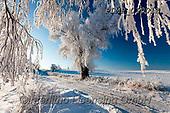 Marek, CHRISTMAS LANDSCAPES, WEIHNACHTEN WINTERLANDSCHAFTEN, NAVIDAD PAISAJES DE INVIERNO, photos+++++,PLMP01001Z,#xl#