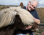 Icelandic pony and owner