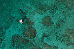 coral reefs and sea  in Cayo Coco (north east of cuba)