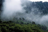 Rocky mountains covered in fog, Seranon, Provence, France.