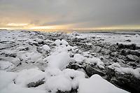 Icebergs on Cook Inlet, Alaska.