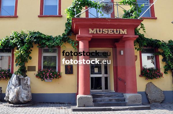 Stadtmuseum Nierstein, im ehemaligen Rathaus, davor versteinerter Stumpf eines Mammutbaumes