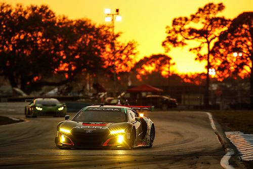 2017 IMSA WeatherTech SportsCar Championship<br /> Mobil 1 Twelve Hours of Sebring<br /> Sebring International Raceway, Sebring, FL USA<br /> Saturday 18 March 2017<br /> 86, Acura, Acura NSX, GTD, Oswaldo Negri Jr., Tom Dyer, Jeff Segal<br /> World Copyright: Michael L. Levitt/LAT Images<br /> ref: Digital Image levitt_seb_0317-30928