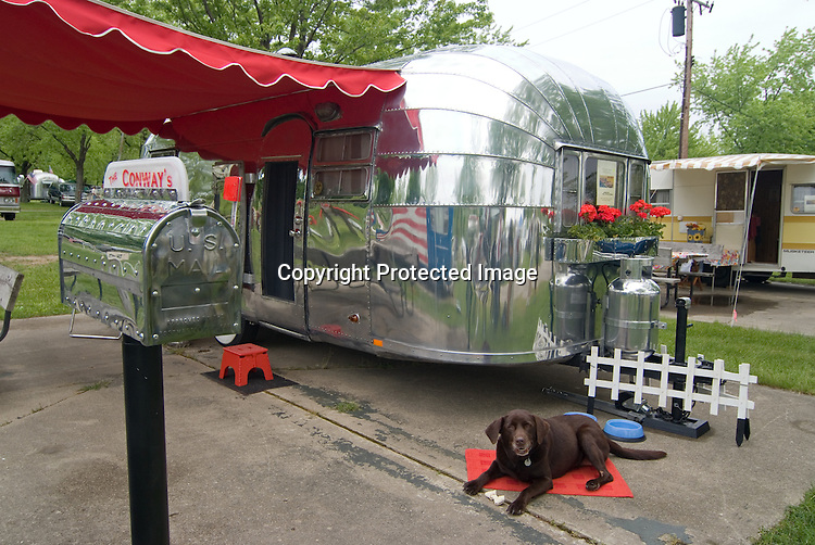 Dog lounging in front of a silver 1953 Airstream Flying Cloud vintage travel trailer.