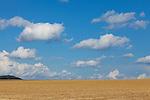 Europa, DEU, Deutschland, Nordrhein Westfalen, NRW, Eifel, Mechernich , Landschaft, Agrarlandschaft, Sommer, Himmel, WOlken, Cumuluswolken, Kategorien und Themen, Landwirtschaft, Landwirtschaftlich, Agrar, Agrarwirtschaft, Erzeugung, Landwirtschaftliche Produkte, Wetter, Himmel, Wolken, Wolkenkunde, Wetterbeobachtung, Wetterelemente, Wetterlage, Wetterkunde, Witterung, Witterungsbedingungen, Wettererscheinungen, Meteorologie, Bauernregeln, Wettervorhersage, Wolkenfotografie, Wetterphaenomene, Wolkenklassifikation, Wolkenbilder, Wolkenfoto<br /> <br /> [Fuer die Nutzung gelten die jeweils gueltigen Allgemeinen Liefer-und Geschaeftsbedingungen. Nutzung nur gegen Verwendungsmeldung und Nachweis. Download der AGB unter http://www.image-box.com oder werden auf Anfrage zugesendet. Freigabe ist vorher erforderlich. Jede Nutzung des Fotos ist honorarpflichtig gemaess derzeit gueltiger MFM Liste - Kontakt, Uwe Schmid-Fotografie, Duisburg, Tel. (+49).2065.677997, archiv@image-box.com, www.image-box.com]