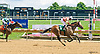 Abide By Me winning at Delaware Park on 7/26/17