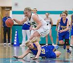 2016 D 1A Girls Basketball Region championships