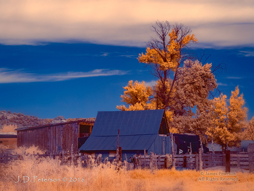 Along Angel Canyon Road, Utah (Infrared) ©2016 James D Peterson.  This southern Utah farm is not far from the historic town of Kanab.