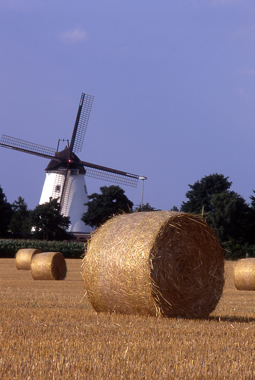Europe, DEU, Germany, North Rhine Westphalia, Lower Rhine, Rheinberg - Ossenberg, Grainfield after the harvest, Windmill, Buentener Muehle....[ For each utilisation of my images my General Terms and Conditions are mandatory. Usage only against use message and proof. Download of my General Terms and Conditions under http://www.image-box.com or ask for sending. A clearance before usage is necessary...Material is subject to royalties. Each utilisation of my images is subject to a fee in accordance to the present valid MFM-List...Contact | archive@image-box.com | www.image-box.com ]