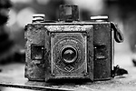 Antique camera in front yard of antique dealers home