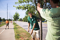 """NWA Democrat-Gazette/CHARLIE KAIJO  Horticulturalist Dana Torczon of the Bentonville Parks and Rec (from center left) and Scott Eccleston, board member of the Bentonville Parks Conservancy prune a tree, Saturday, June 9, 2018 along SE """"J"""" Street in Bentonville. <br /> <br /> The Bentonville Parks Conservancy pruned the trees along SE """"J"""" street, between SE 8th Street and HWY 102 Saturday as part of tree maintenance days that it will hold throughout the summer to help develop tree canopies throughout the city's parks and trails. <br /> <br /> The Bentonville Parks Conservancy is a non-profit organization that works with the city to help develop and maintain the city tree canopy and parks. Part of their vision is to develop a volunteer work force that will meet throughout the year to work on tree maintenance as needed by the city and parks department.<br /> <br /> 14 volunteers showed up Saturday to help prune about 100 trees."""