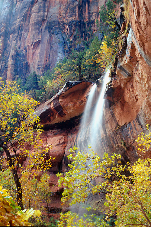 An overnight rainstorm brightens the limestone cliffs and fills Emerald Pools Waterfall in Zion NP, Utah.