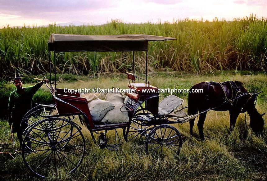 A man enjoys fresh sugar cane cut from the field behind him in Eastern Cuba (1998)