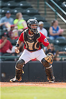 Hickory Crawdads catcher Jose Trevino (7) checks the runner at first base during the game against the Savannah Sand Gnats at L.P. Frans Stadium on June 14, 2015 in Hickory, North Carolina.  The Crawdads defeated the Sand Gnats 8-1.  (Brian Westerholt/Four Seam Images)