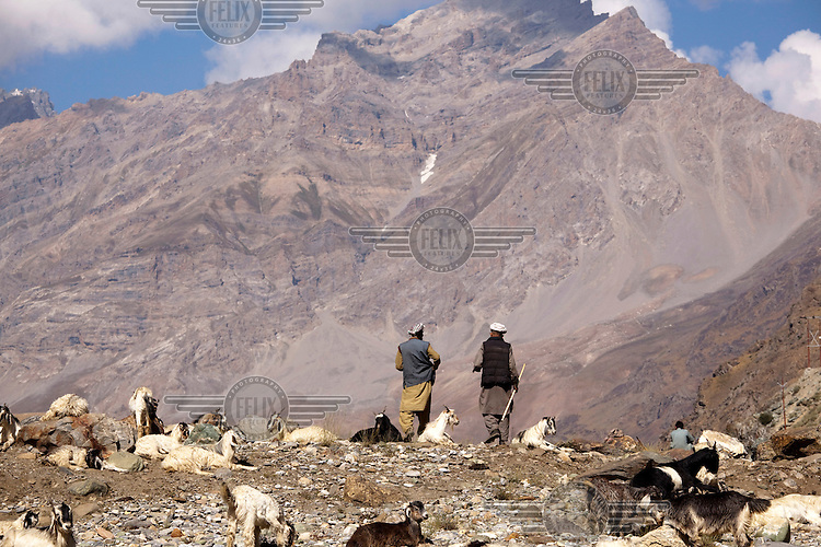 Goat herders with mountains in the background.