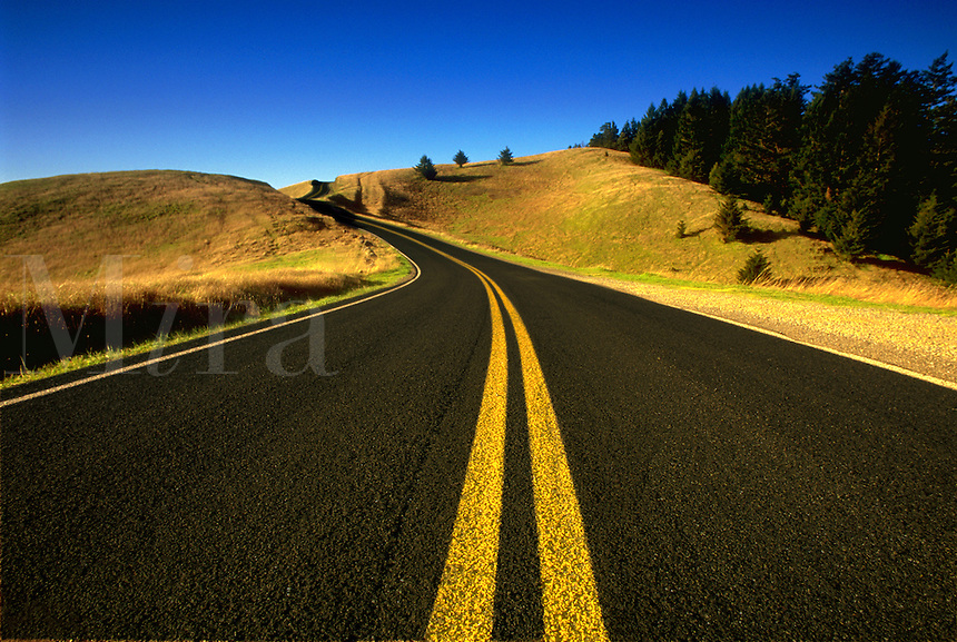Winding Road<br />
