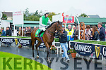 Double Windsor ridden by KC Sexton at the Listowel Harvest Racing Festival on Sunday